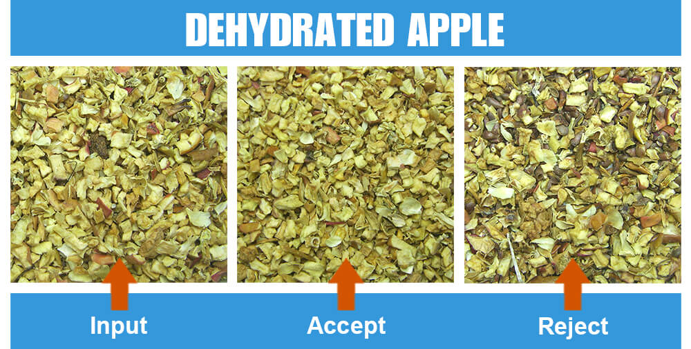 Sorted Sample Dehydrated Apple