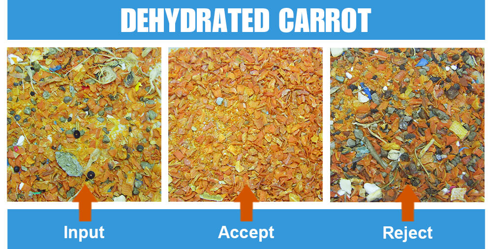 Sorted Sample Dehydrated Carrot