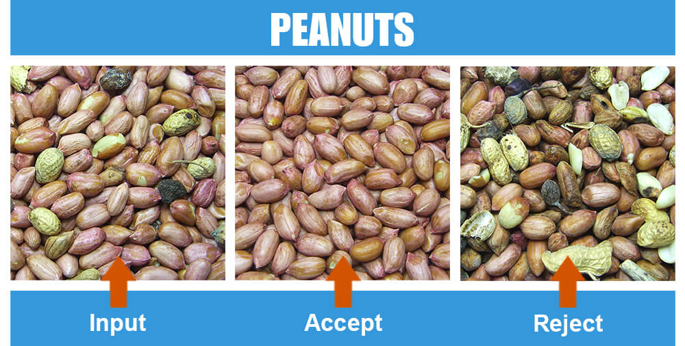 Sorted Sample Peanuts Two