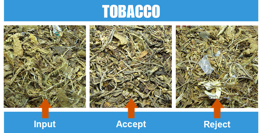 Sorted Sample Tobacco