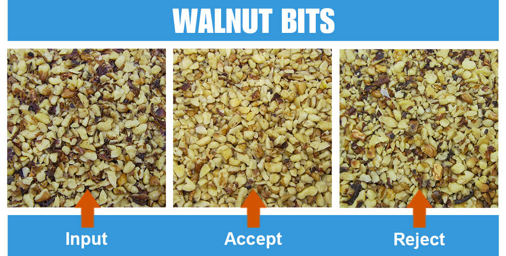 Sorted Sample Walnut Bits