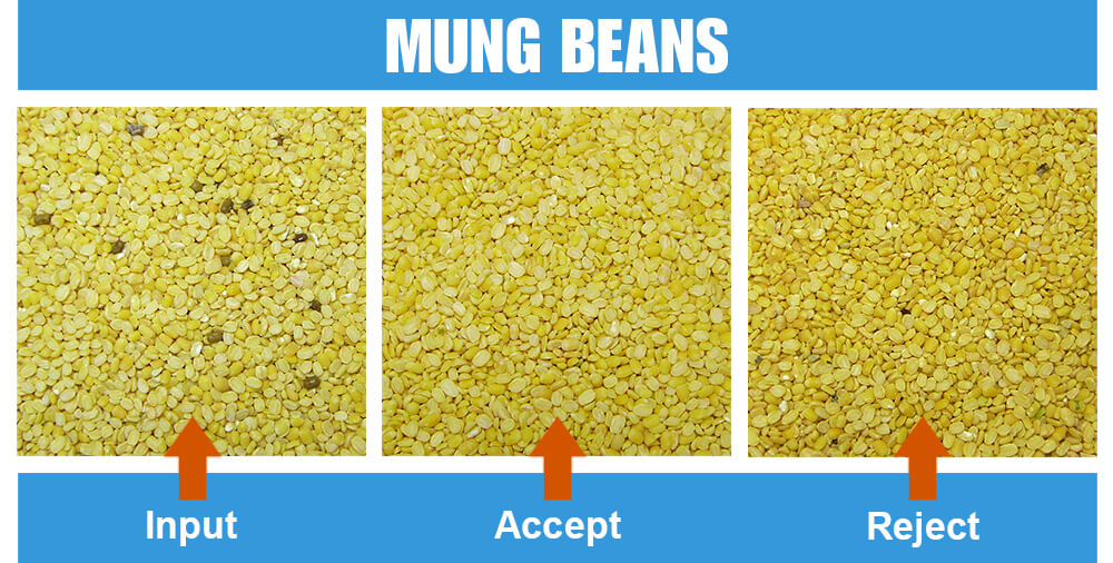 Sorted Sample Mung Beans