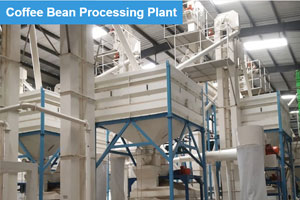 Coffee Bean Processing Plant